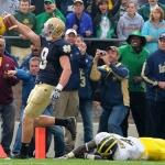 Evaluating the Irish: Michigan Wolverines